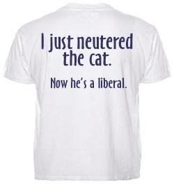 cat-shirtback.jpg